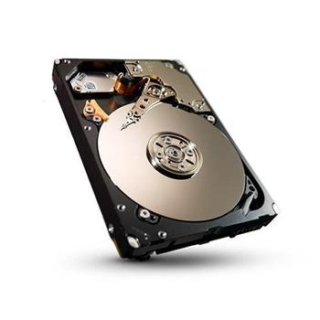 Seagate Enterprise Performance 10K HDD, 2.5'', 300GB, SAS, 10000RPM, 64MB - ST300MM0006