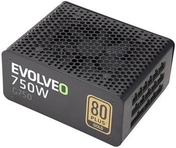 EVOLVEO G750 zdroj 750W, eff 91%, 80+ GOLD, aPFC, modulární, retail - E-G750R